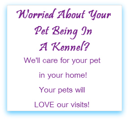 Rebecca's Pet Care Services - Biloxi MS